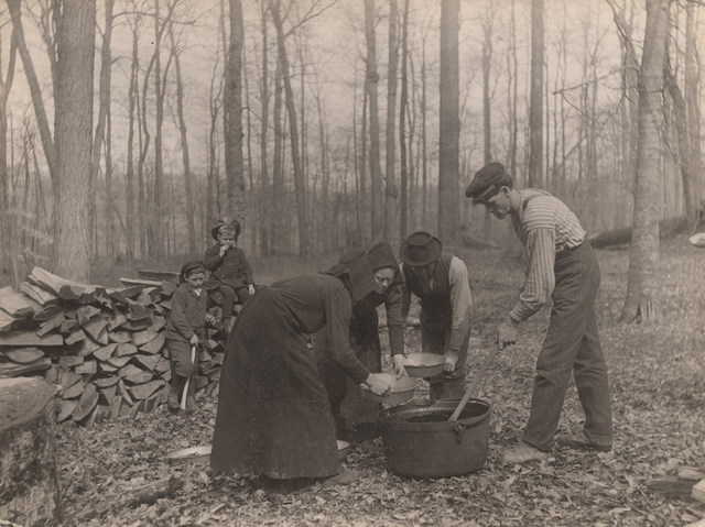 Making sugar, 1907