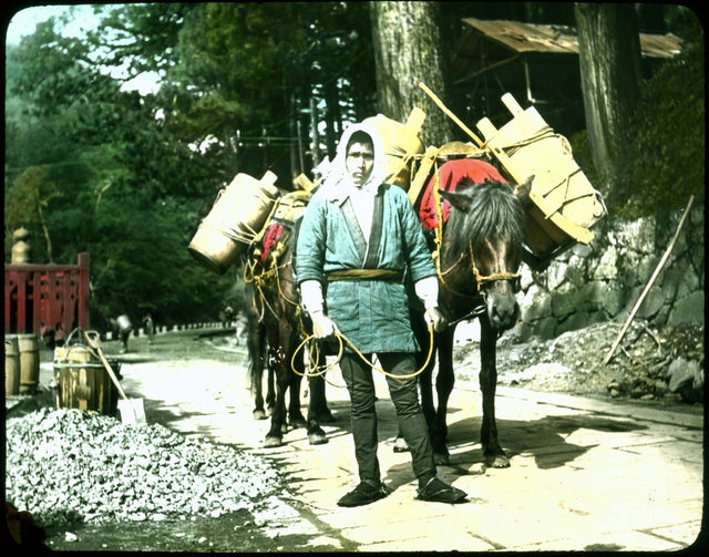Man in local attire with loaded packhorses.