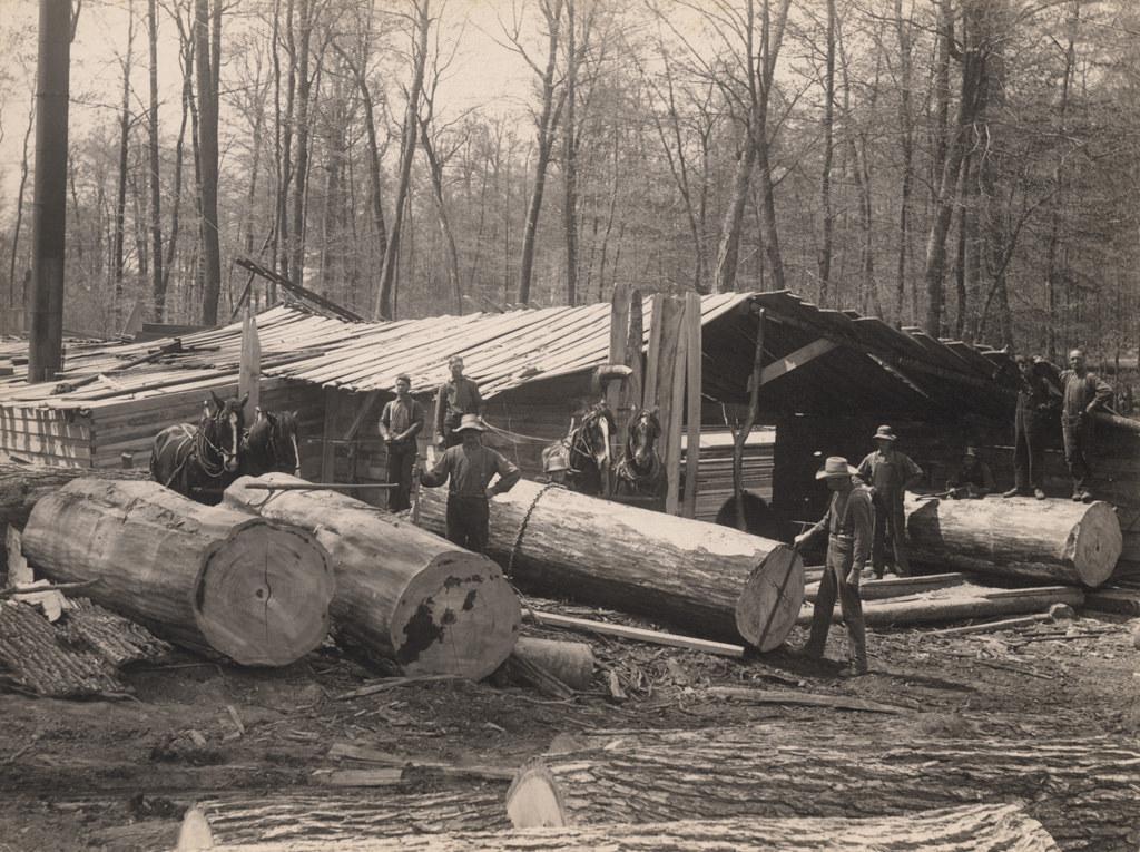 Moving logs, 1911