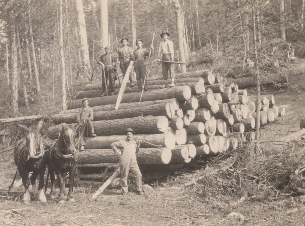 Движущиеся бревна, 1917