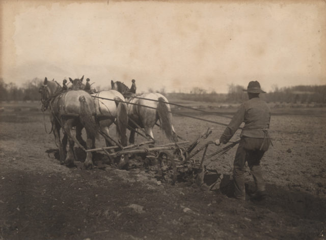 Plowing, 1910
