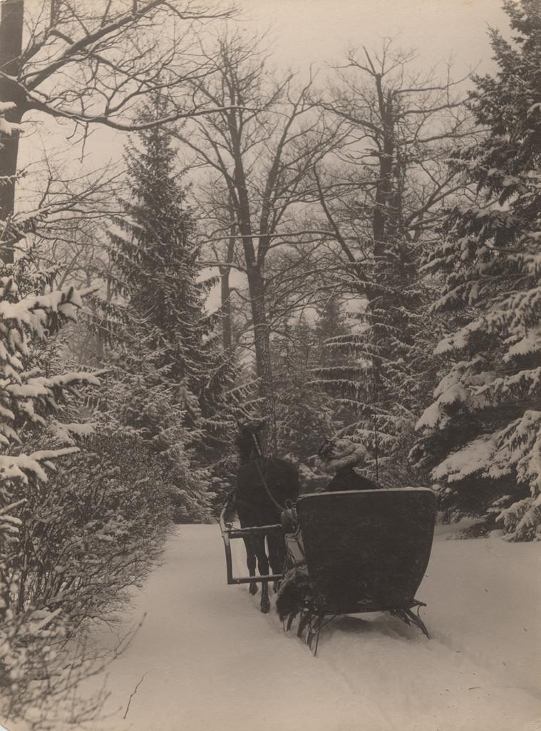 Sledding in winter, 1909