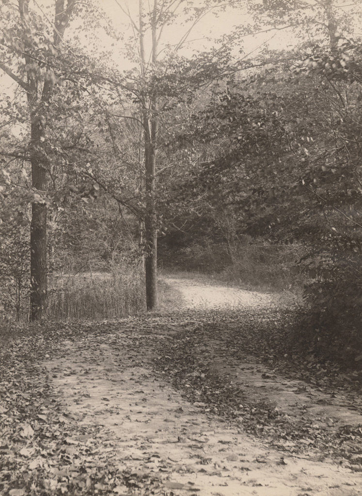 When the leaves begin to fall, 1910