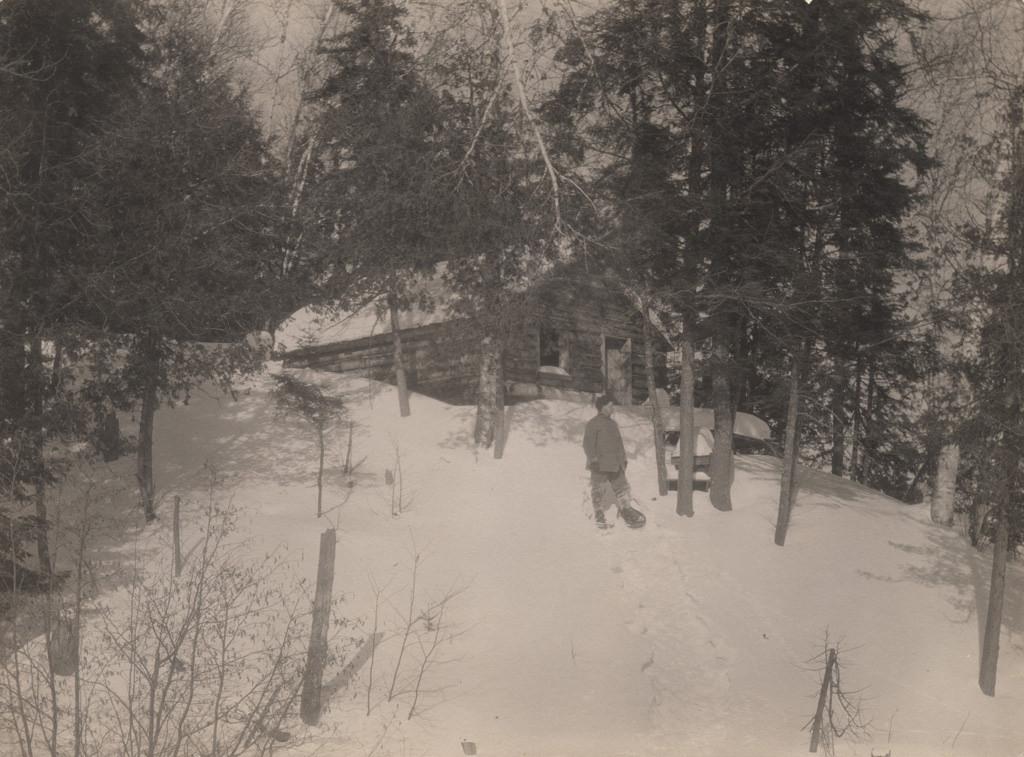 Зимний домик, 1917 год