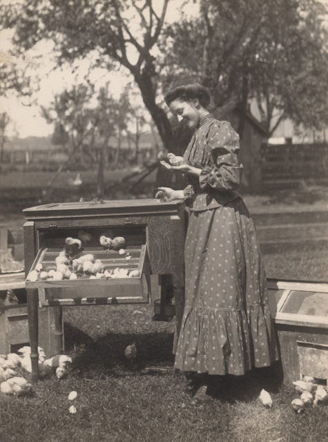 Woman holding baby chick, 1910
