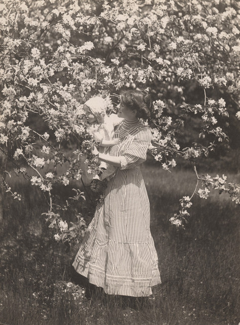 Woman holding child and blossoms , 1911