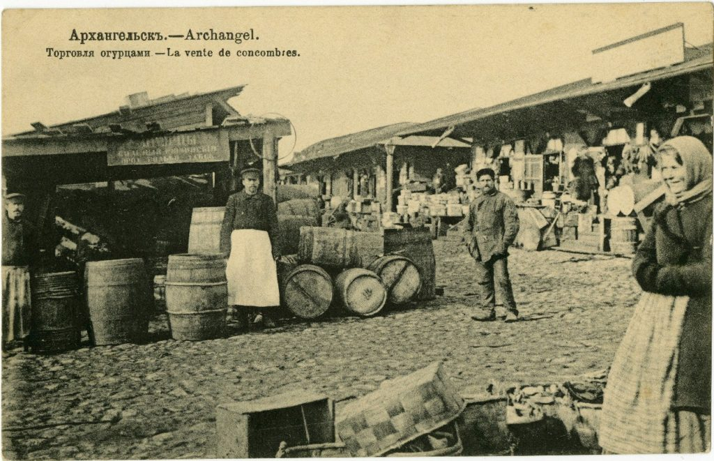Cucumber trade. Arkhangelsk (Archangel)