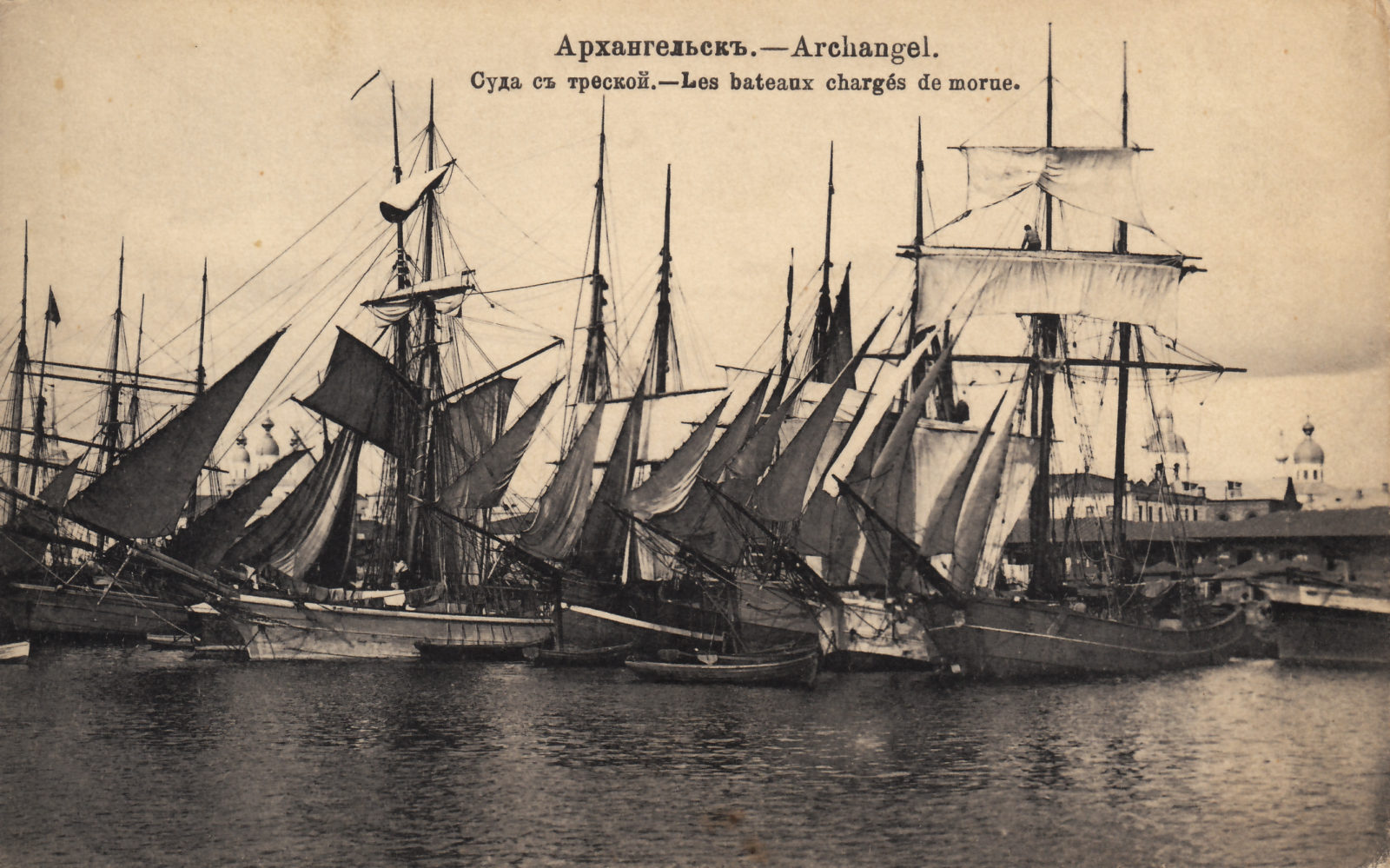 Arkhangelsk - Boats with cod fish (Archangel)