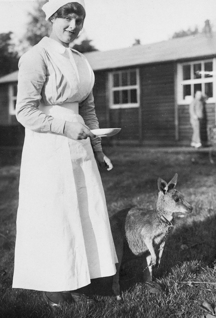 Australian nurse with a kangaroo mascot