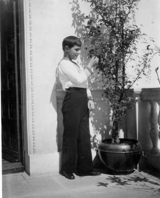 Tsesarevitch Alexei. Livadia. 1914.