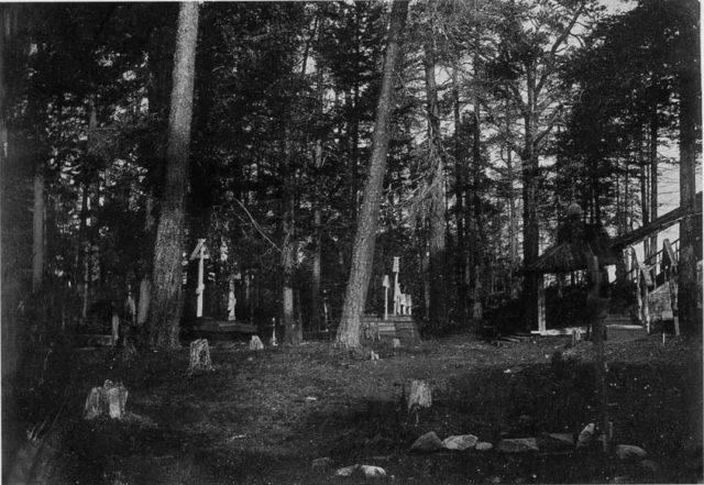 Cemetery in the woods. Onega, Arkhangelsk region, Russia, White Sea.
