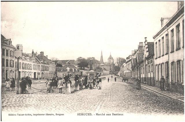 Postcard: Bergues - Marche aux Bestiaux, sent Feb 1915