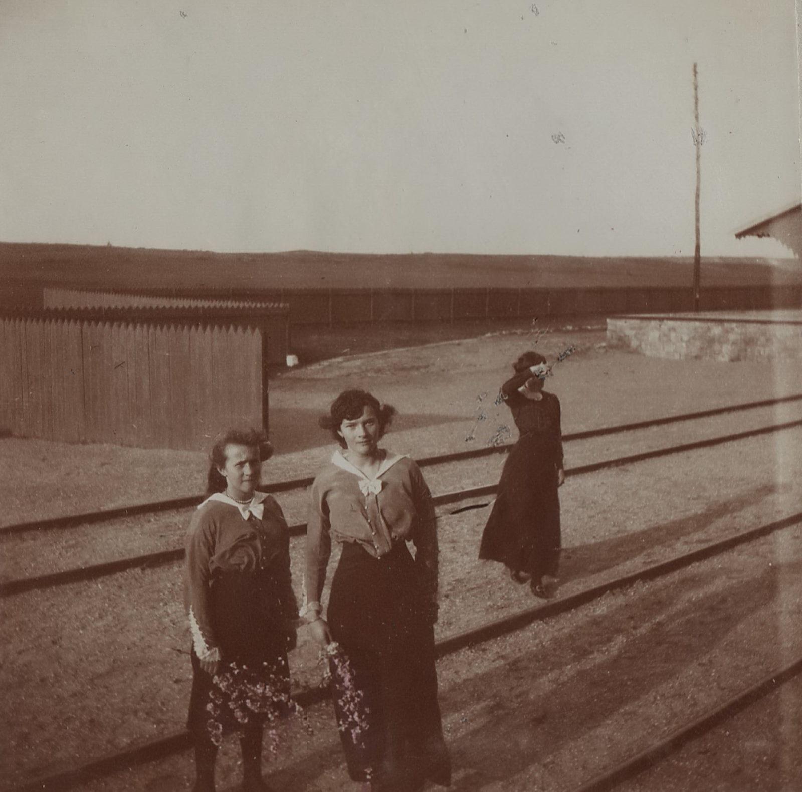 Grand Duchesses Olga, Tatiana, Maria, Livadia, 1914-1916