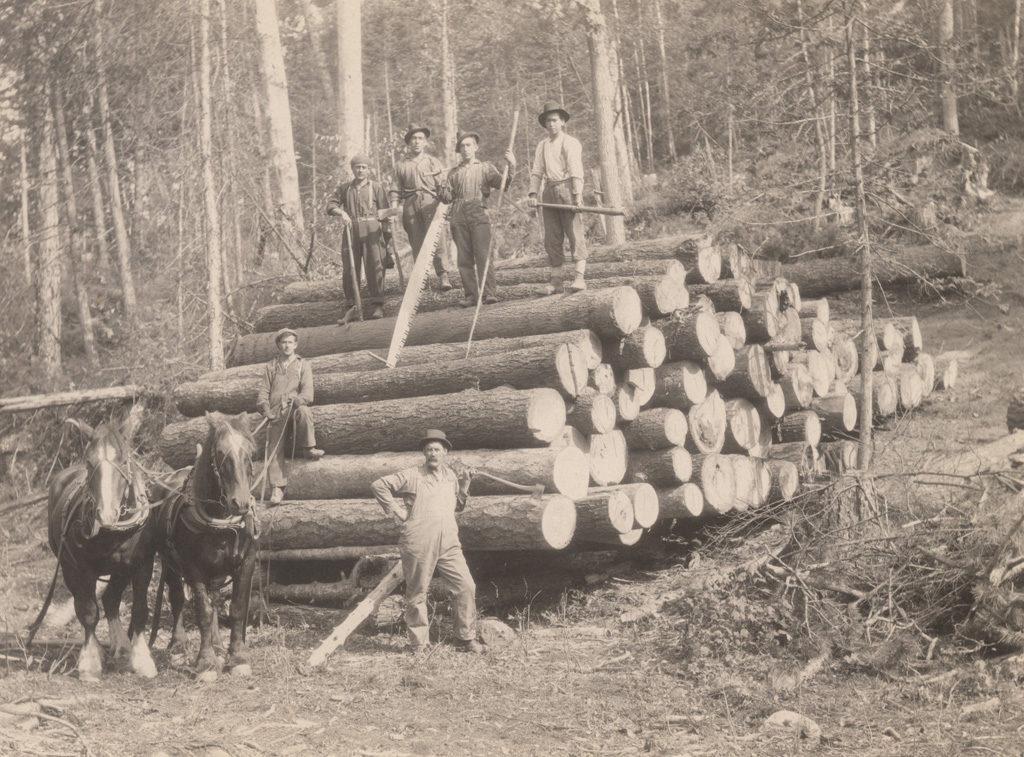 Moving logs, 1917