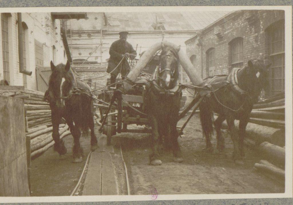 Saint Horses. Petersburg in 1917. Albert Thomas travel to Russia.
