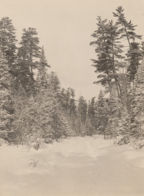 Winter landscape, 1917