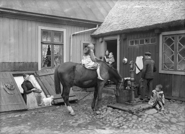 People and animals in a yard in southern Sweden