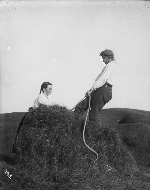 Hey bundið í bagga, 1907