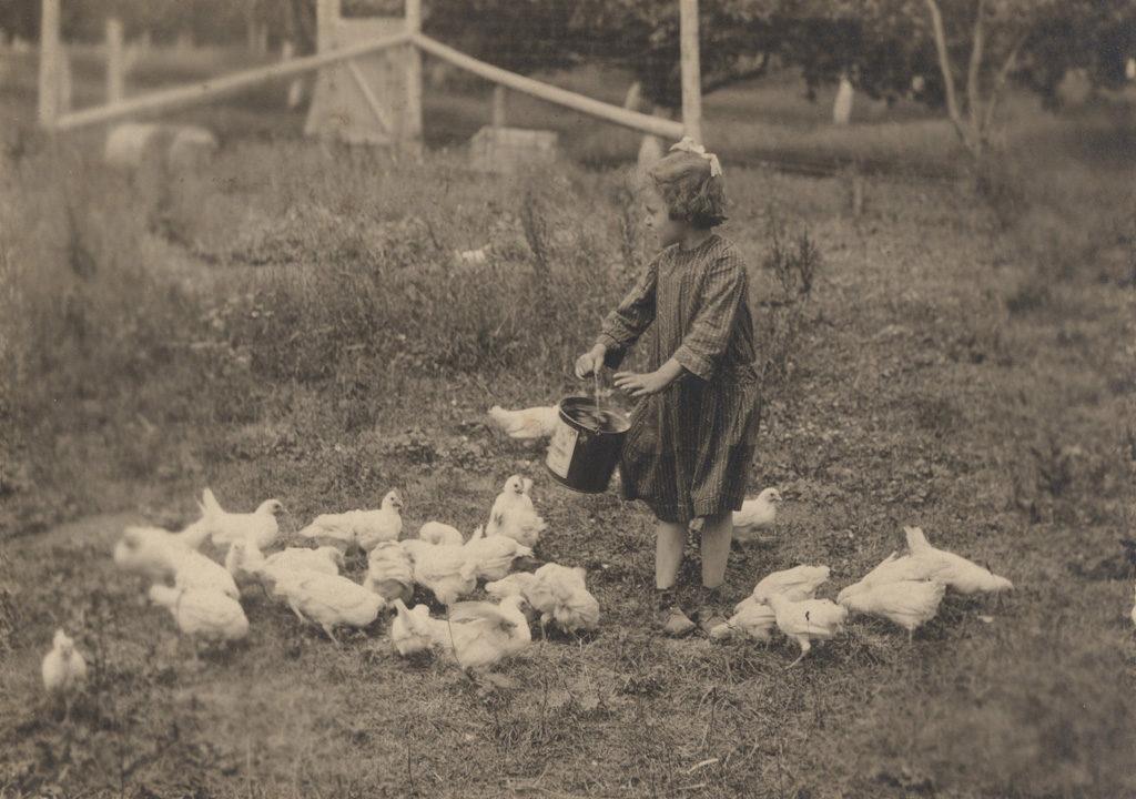 Винни кормит цыплят, 1920 год