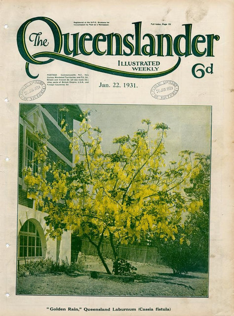 Illustrated front cover from The Queenslander, January 22, 1931