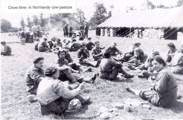 Chow time in Normandy Cow Pasture