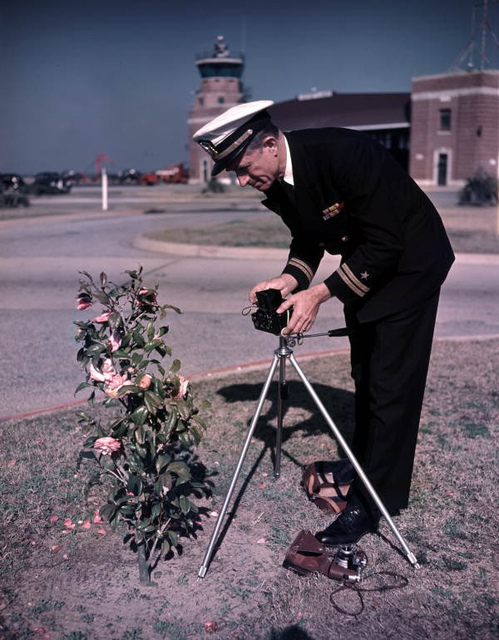 Lt. Joe Steinmetz photographing a camellia bush at NAS Pensacola