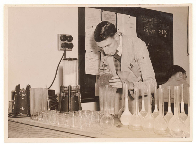 C.S.I.R. Canning Research laboratory investigates rabbit lactose, 1946, by Sam Hood