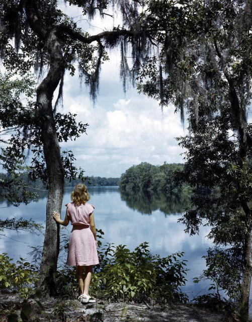 Lois Duncan Steinmetz gazing at the Suwannee River