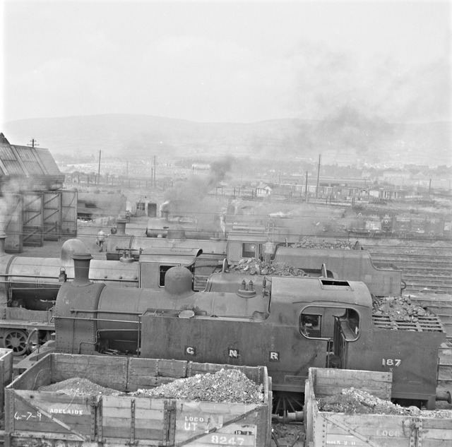 Trains lined up at sheds, Adelaide, Co. Antrim.