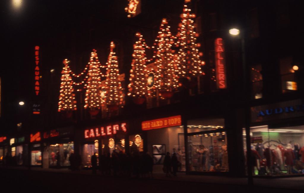 Callers christmas lights