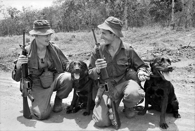 Tracker dogs, 1967