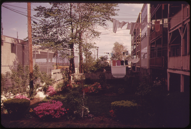 Well-kept Backyards are the Rule in East Boston Where Homeowners Take Great Pride in Their Neighborhood
