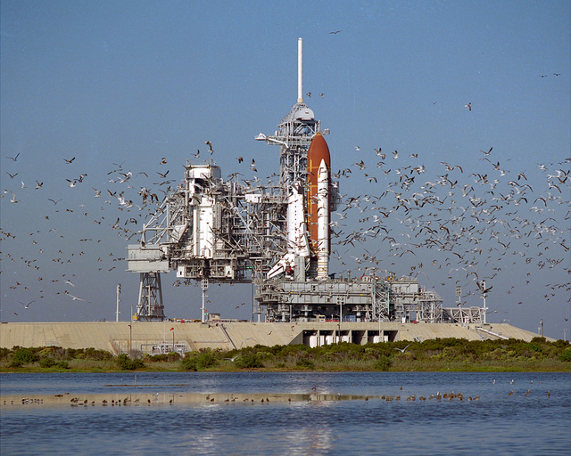 STS-27 Rollout
