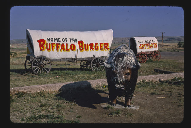Al's Oasis buffalo and covered wagon statues, B-90, Oacoma, South Dakota (LOC)