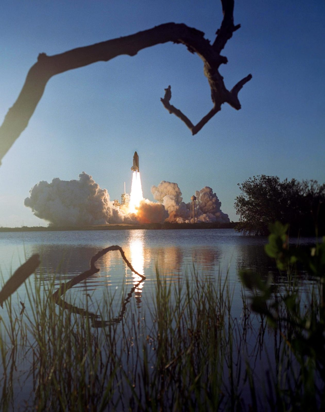 """STS117-S-032 (8 June 2007) --- Framed here by branches, the Space Shuttle Atlantis and its seven-member STS-117 crew head toward Earth-orbit and a scheduled link-up with the International Space Station. Liftoff from Kennedy Space Center's launch pad 39A occurred at 7:38 p.m. (EDT) on June 8, 2007. Onboard are astronauts Rick Sturckow, commander; Lee Archambault, pilot; Jim Reilly, Patrick Forrester, John """"Danny"""" Olivas, Steven Swanson and Clayton Anderson, all mission specialists. Anderson will join Expedition 15 in progress to serve as a flight engineer aboard the station. Atlantis will dock with the orbital outpost on Sunday, June 10, to begin a joint mission that will increase the complex's power generation capability. Using the shuttle and station robotic arms and conducting three scheduled spacewalks, the astronauts will install another set of giant solar array wings on the station and retract another array, preparing it for a future move. STS117-S-032"""