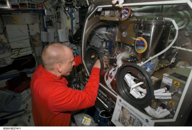 View of Anderson working with SAME Hardware in the US Lab during Expedition 15
