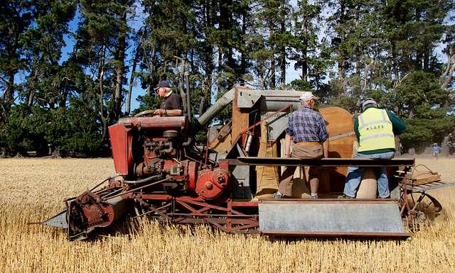 Harvest time Canterbury.