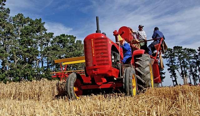 Massey Harris Harvesting.NZ.