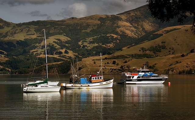 Akaroa Harbour NZ
