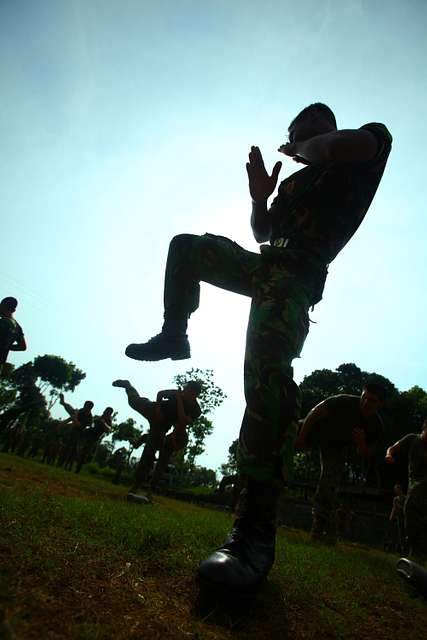 Martial arts training with U.S. Marines with Landing Force