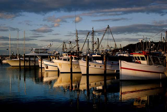 Port  Stephens. NSW Australia.