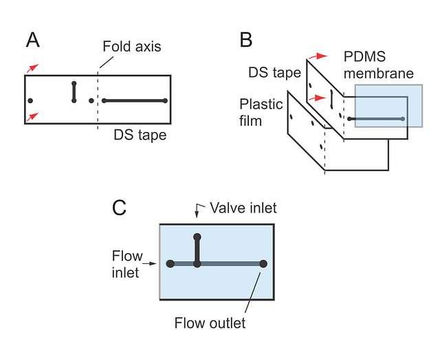 Microfluidic Device (13586357465)
