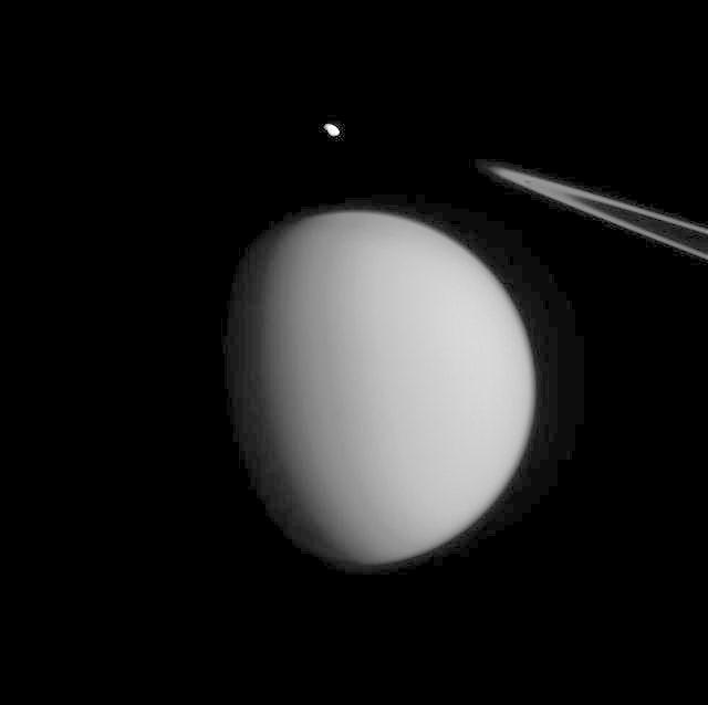 Titan Accent Mark