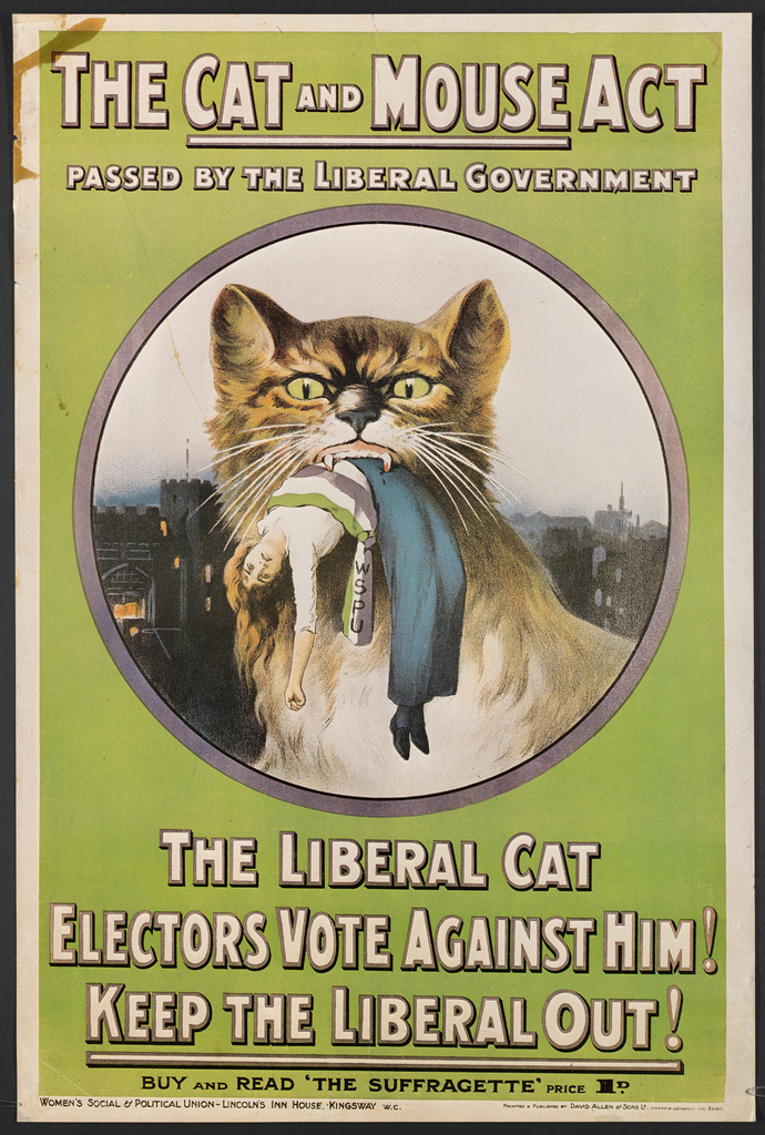 Suffrage Posters from Schlesinger Library