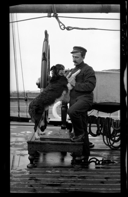 Ship's officer with pet dog, posed at ship's wheel, 1907-1928