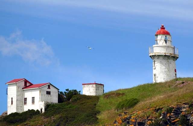 Taiaroa Head Lighthouse Otago Peninsula