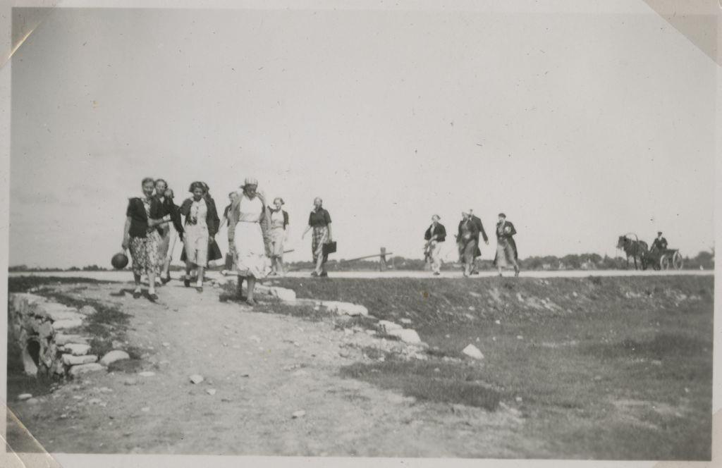 Õpilased matkal Linnulahele / Students hiking to Linnulaht