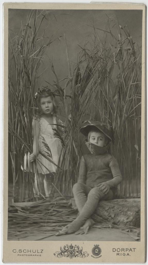 Printsess ja konn / The princess and the frog