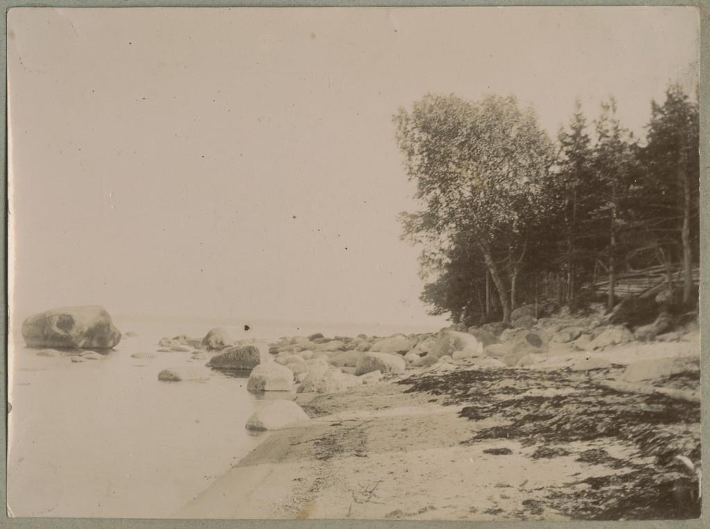 Rändrahnudega rannik / Coast with erratic boulders