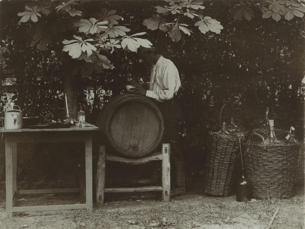 Veinitegu / Winemaking